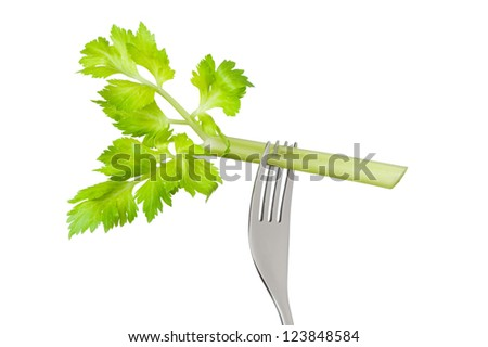 fresh celery stalk on a fork isolated against a white background