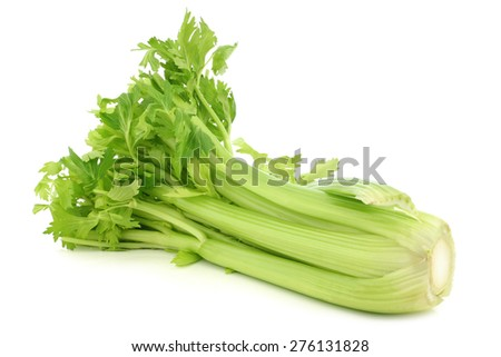 fresh celery stems on a white background - stock photo