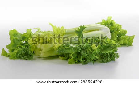 Fresh celery with lettuce on white background - stock photo