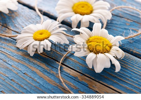 Fresh chamomile flowers on wooden table, closeup - stock photo