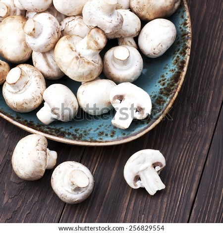 Fresh champignon mushrooms  - stock photo