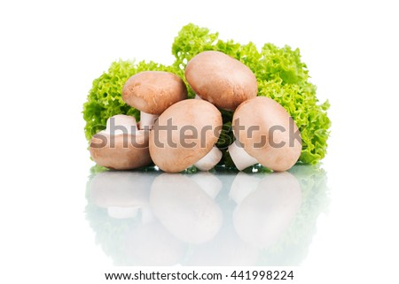 fresh champignons with green leaves lettuce isolated on white