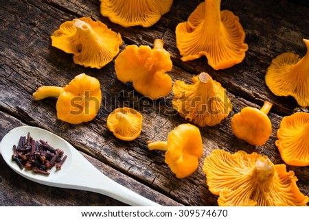 fresh chanterelles and spoon with spices on a wooden background side view - stock photo
