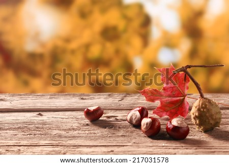 Fresh chestnuts from an autumn harvest lying on an old rustic wooden table with a colorful red leaf against a backdrop of autumn foliage in a garden, with copyspace - stock photo
