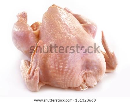 fresh chicken - stock photo