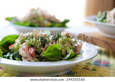 Fresh chicken and broccoli salads on the table for lunch. - stock photo