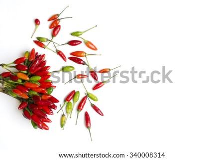 fresh chilli peppers, various kinds on white, space for advertising text, selective focus - stock photo