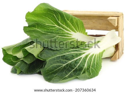 fresh chinese paksoi in a wooden crate on a white background - stock photo