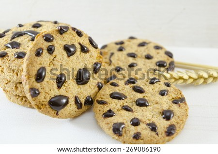Fresh chocolate chip cookies and wheat on white background - stock photo