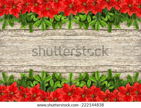 fresh christmas tree branches over rustic wooden background. border from undecorated evergreen twigs and red poinsettia flowers - stock photo