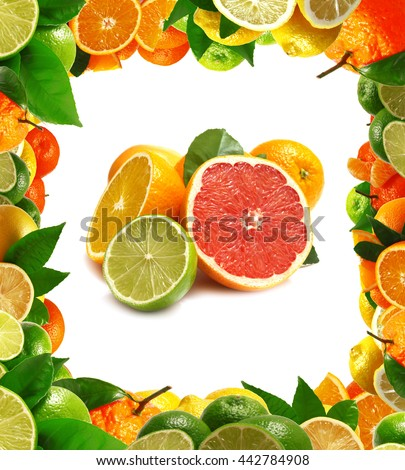 Fresh citrus - stock photo