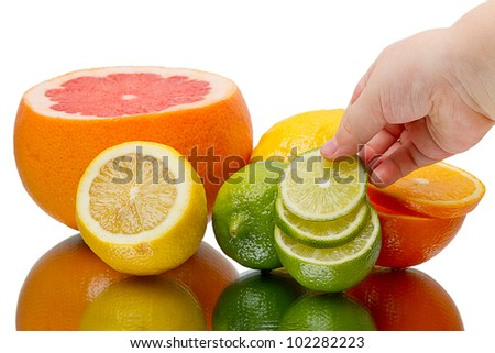Fresh citrus fruits and the hand of a child isolated on white background