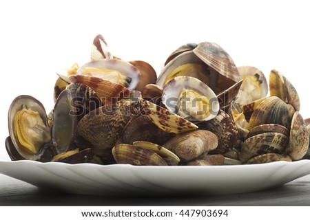 Fresh Clam cooked close up on white  - stock photo