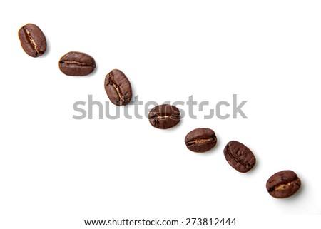 Fresh coffee bean is isolated on white background.