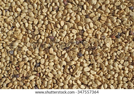 fresh coffee beans as background