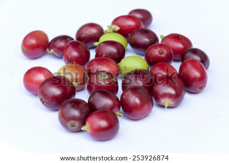Fresh coffee beans isolate style - stock photo