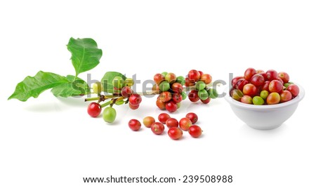 fresh coffee beans on white background - stock photo