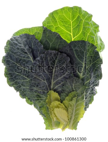 Fresh Collard Greens Isolated on White with a Clipping Path.