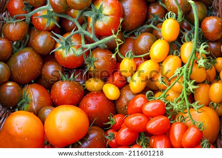 Fresh colorful tomatoes, top view