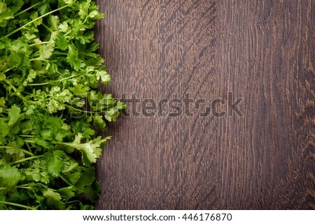Fresh coriander leaves on a dark wood background. Free space for text. - stock photo