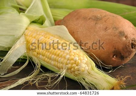 Fresh corn and a potato - stock photo