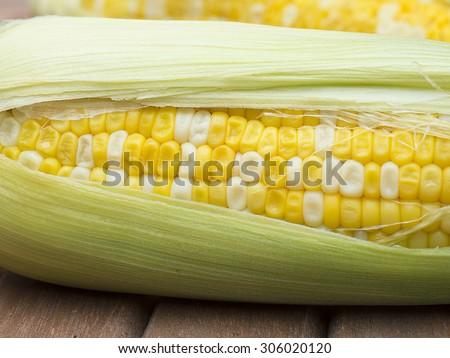 Fresh corn close up - stock photo