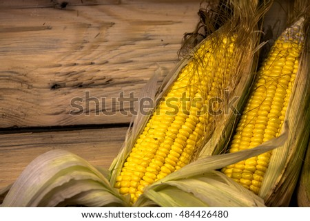 fresh corn from farm.gardener harvest sweet corn from his farm sweet corn is a crop that lends itself well to small-scale and part-time farming operations. Initial investment is relatively low