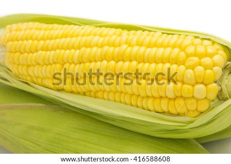 Fresh corn on cobs on white background, closeup - stock photo