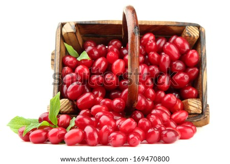 Fresh cornel berries in wooden basket, isolated on white - stock photo