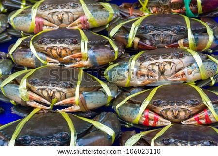 Fresh crabs on sale at a local market in Thailand - stock photo