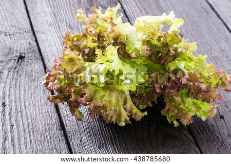 Fresh crispy lettuce and Lollo Rossa. The source of vitamins and minerals, detox, diet, health or vegetarian food concept - stock photo