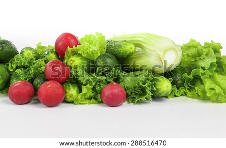 fresh cucumbers with radish and celery on white background - stock photo
