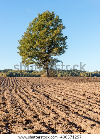fresh cultivated field in autumn in countryside