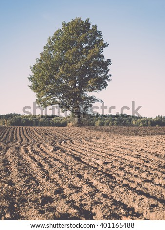 fresh cultivated field in autumn in countryside - vintage film effect