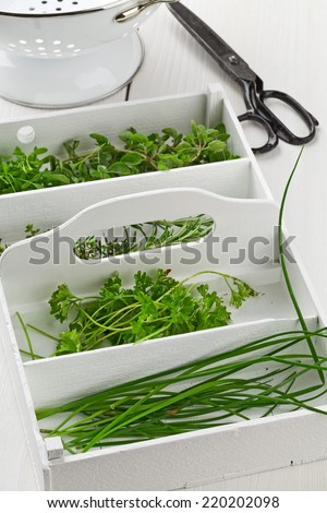 Fresh cut garden herbs (marjoram, cress, rosemary, thyme, parsley, chives) in white wooden box on kitchen table - stock photo
