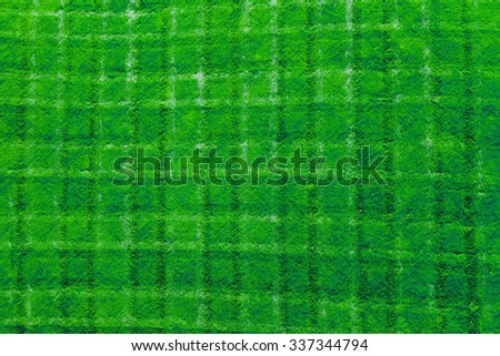 Fresh cut green grass background texture pattern - stock photo