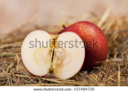 Fresh cut red apple showing the inside and sitting on ground