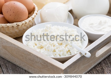 fresh dairy products on  wooden tray, closeup - stock photo