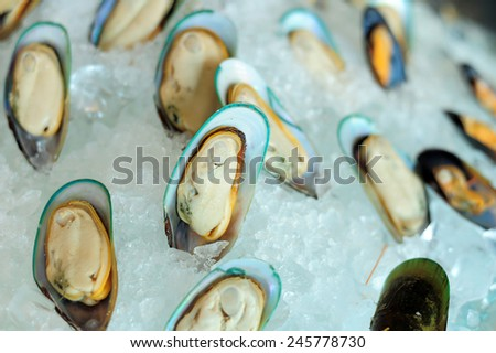 fresh delicious seafood mussels on ice - stock photo