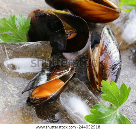 fresh delicious seafood mussels with green parsley - stock photo