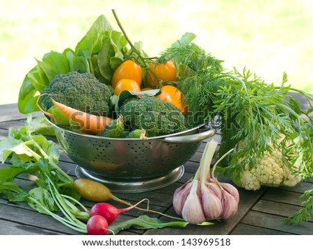 Fresh different vegetables in bowl on natural background , selective focus