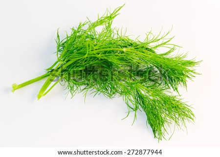 Fresh dill close up on white background - stock photo