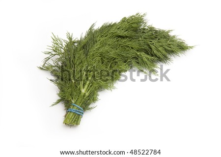 Fresh Dill isolated on a white studio background.