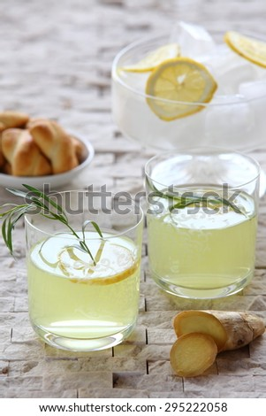 Fresh drink coctails - stock photo