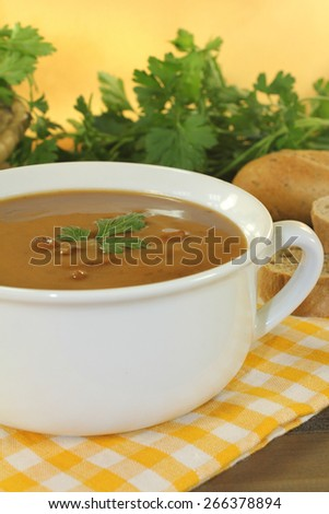 fresh duck soup on a checkered napkin and parsley - stock photo