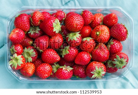 Fresh eco grown strawberries in plastic basket. They are smaller than other, but not genetically or chemically treated.
