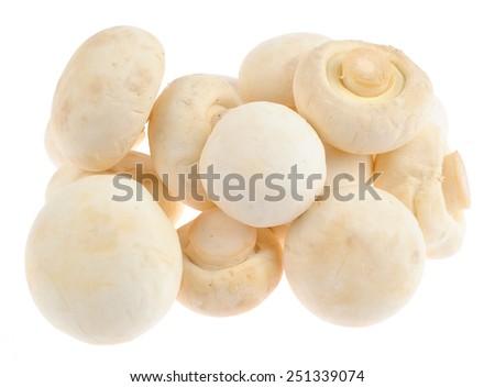 Fresh edible Mushroom Champignon over white background - stock photo