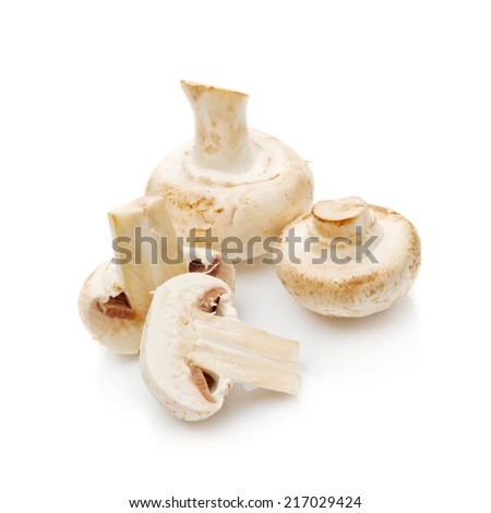 Fresh edible Portabello Mushroom Champignon over white background with reflection. - stock photo