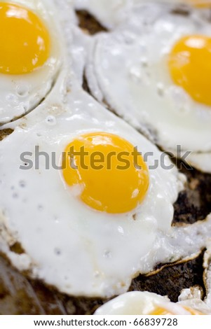 Fresh Eggs Frying Sunny Side Up On A BBQ Hotplate - stock photo