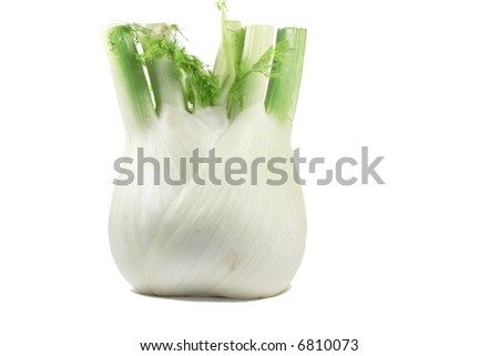 Fresh fennel isolated over white.